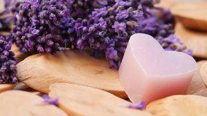 lavender-2443220_1920-300x169
