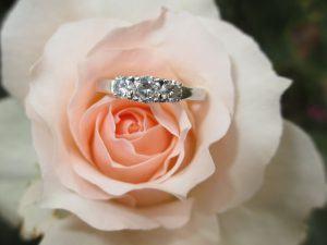 ring-1665611_1280-300x225